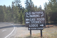 Explore Roadside Nature - Yellowstone NP Old Faithful area