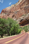 Explore Roadside Nature - Zion Road