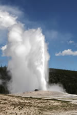 Explore Roadside Nature - Old Faithful