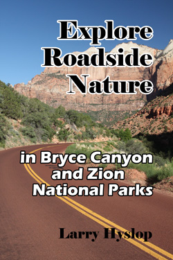 Explore Roadside Nature - Zion Bryce Canyon Cover